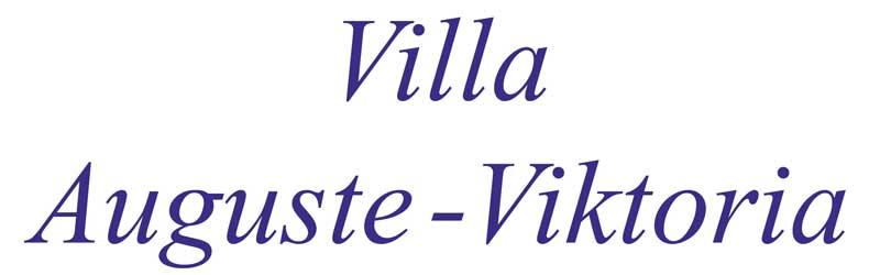 Schriftzug VAV original 300 rgb